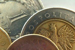 Pożyczki i kredyty - 5 złotówki i inne monety